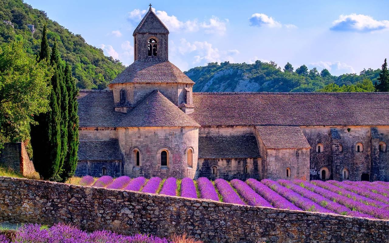 Paysage de provence avec de la lavande, séjour saint remy de provence, Le Vallon de Valrugues & Spa.