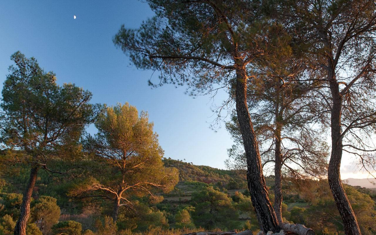 Vacances en nature hôtel de luxe Les Bories